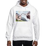 Creation / Chihuahua Hooded Sweatshirt