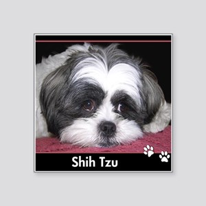 Shih Tzu Dog Photo Sticker