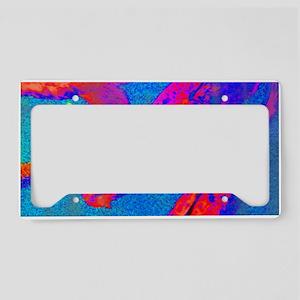 Bright Coy License Plate Holder
