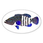 Peacock Grouper Roi Sticker