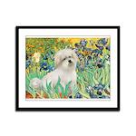 Irises / Coton Framed Panel Print