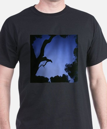 Cool Hasselblad T-Shirt
