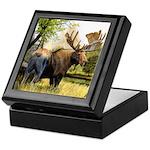 Moose Keepsake Box