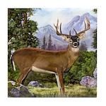 White Tailed Deer Tile Coaster