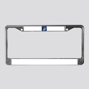 Tree branches in silhouette ag License Plate Frame