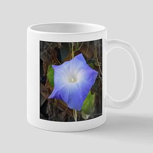 Morning Glory Mugs