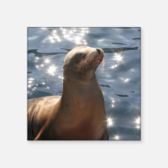 Sparkling Sea Lion Sticker