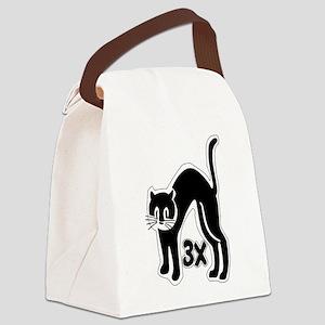 u48_cat_times_3 Canvas Lunch Bag