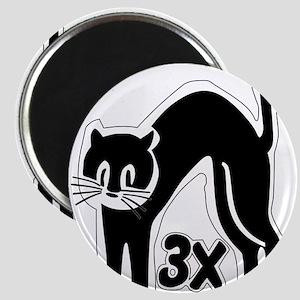 u48_cat_times_3 Magnets