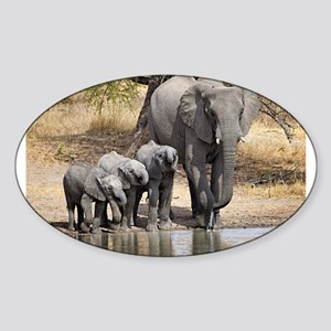 Elephant mom and babies Sticker