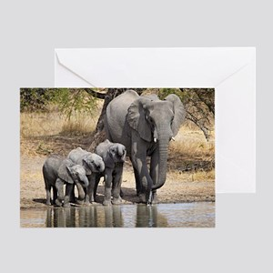 Elephant Mom And Babies Greeting Cards