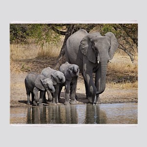 Elephant mom and babies Throw Blanket