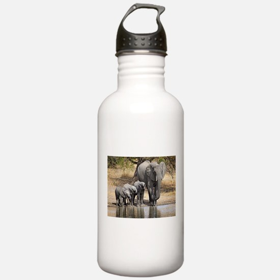 Elephant mom and babies Water Bottle