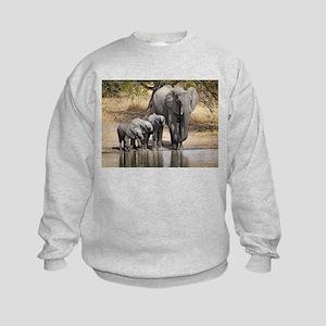Elephant mom and babies Sweatshirt