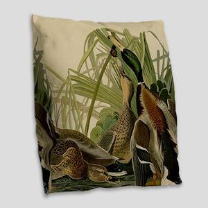 Mallard duck Audubon Bird Vintage Print Burlap Thr