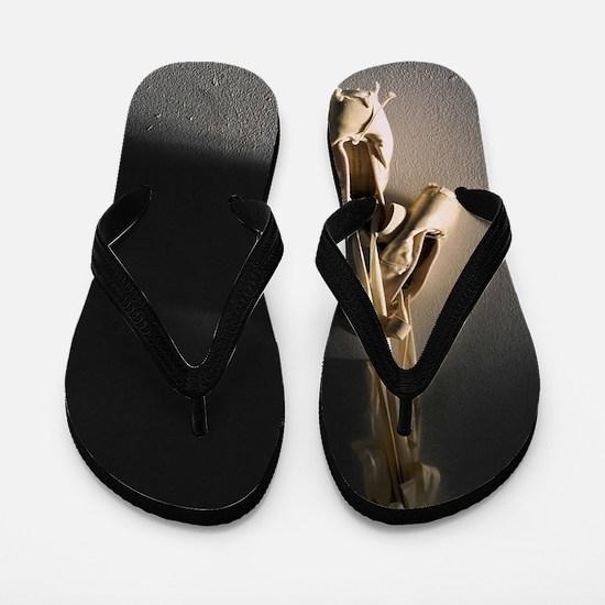 Pointe Shoes Ballet Flip Flops