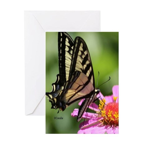 Colorful Yellow Swallowtail Butterf Greeting Cards