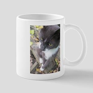 grey autumn cat Stainless Steel Travel Mugs