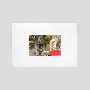 Kona and Koko outdoors on deck 4' x 6' Rug