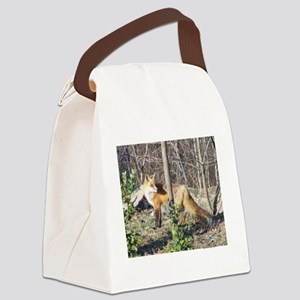 ALFA RED FOX Canvas Lunch Bag