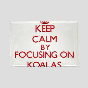 Keep Calm by focusing on Koalas Magnets