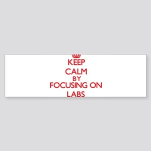Keep Calm by focusing on Labs Bumper Sticker