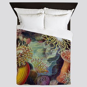 Vintage sea anemones illustration Queen Duvet
