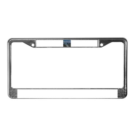 view License Plate Frame