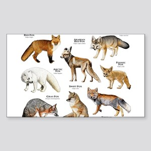 Foxes of the World Sticker (Rectangle)