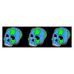 Skull Earth Bumper Sticker
