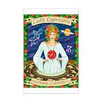 Lady Capricorn Mini Poster Print