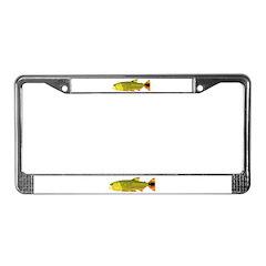 Golden Dorado License Plate Frame