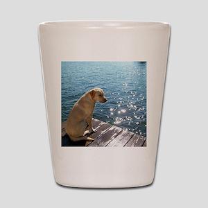 Yellow Labrador Shot Glass