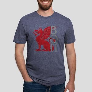 Beta Theta Pi Dragon Letters T-Shirt