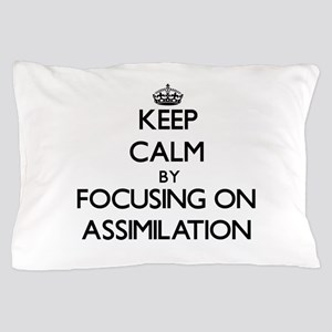 Keep Calm by focusing on Assimilation Pillow Case