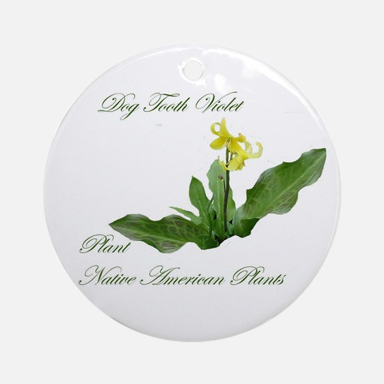 NATIVE AMERICAN PLANTS Ornament (Round)