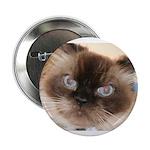 Himalayan Cat Button
