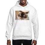 Himalayan Cat Hooded Sweatshirt
