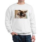 Himalayan Cat Sweatshirt