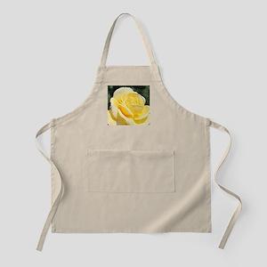 beautiful yellow rose flower Apron