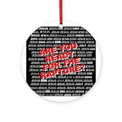 Are your ReadyOrnament (Round)