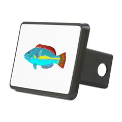 Belted Wrasse Hitch Cover