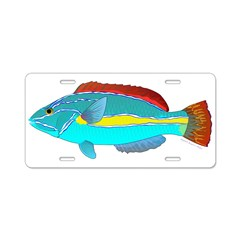 Belted Wrasse Aluminum License Plate