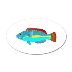 Belted Wrasse Wall Decal