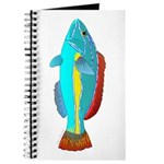 Belted Wrasse Journal