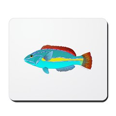 Belted Wrasse Mousepad