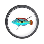 Belted Wrasse Wall Clock