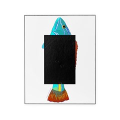 Belted Wrasse Picture Frame