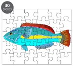 Belted Wrasse Puzzle