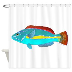 Belted Wrasse Shower Curtain